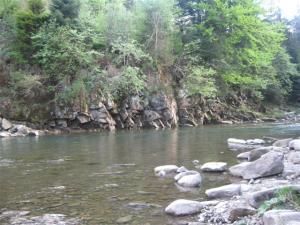 река Мизунка, минеральная вода, вода минеральная